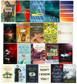 Books of the Year 49th Shelf 2016