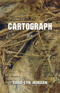 Book Cover Cartography
