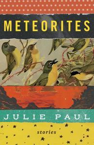 Book Cover Meteorites