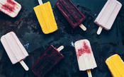Ice Pops from Olive Oil and Vinegar Lovers Cookbook