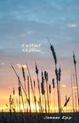 Book Cover Cattail Skyline