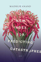 Book Cover A New Index for Predicting Catastrophes