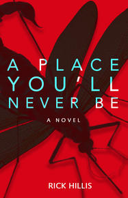 Book Cover A Place You'll Never be