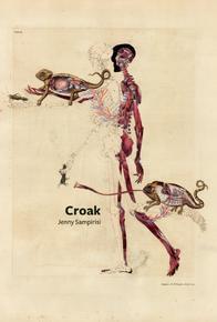 Book Cover Croak