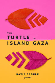 Book Cover From Turtle Island to Gaza