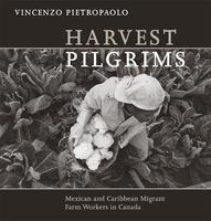 Book Cover Harvest Pilgrims