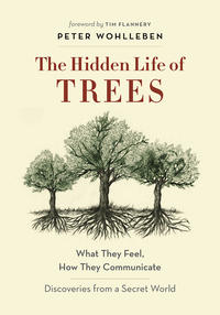 Book Cover Hidden Life of Trees