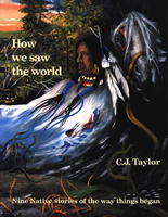 Book Cover How We Saw the World