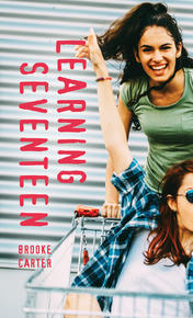 Book Cover Learning Seventeen