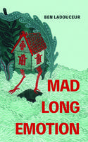 Book Cover Mad Long Emotion