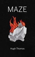 Book Cover Maze