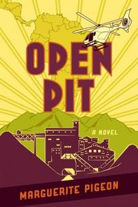 Book Cover Open Pit