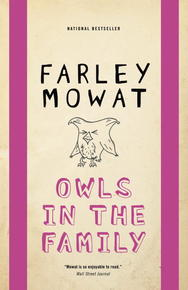 Book Cover Owls in the Family