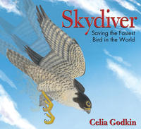 Book Cover Skydiver