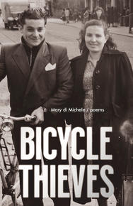 Book Cover The Bicycle Thieves