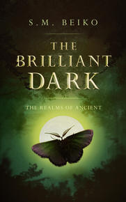 Book Cover The Brilliant Dark