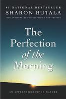 Book Cover the Perfection of the Morning