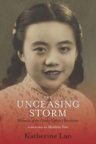 Book Cover The Unceasing Storm