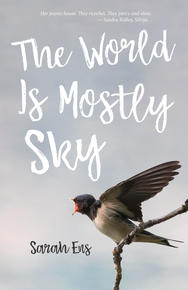 Book Cover The World is Mostly Sky