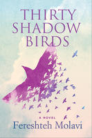 Book Cover Thirty Shadow Birds