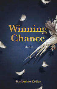 Book Cover Winning Chances