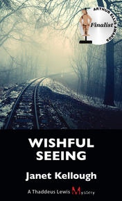 Book Cover Wishful Seeing