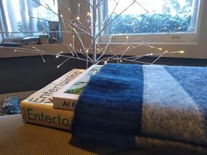 Photo of two books in a knitted cozy against the backdrop of a minimalist illuminated tree