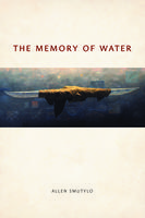 The Memory of Water. Artwork: Greeland Passage, by Allen Smutylo.