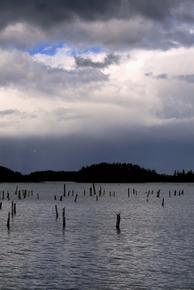 Tristan Hughes Sticks in Lake
